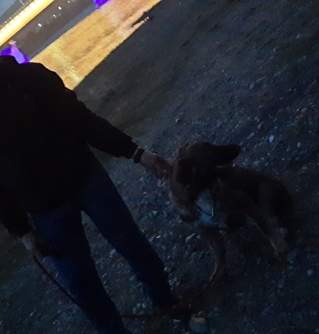 Парни в Кызыле: Евгений, 34 - ищет девушку из Кызыла