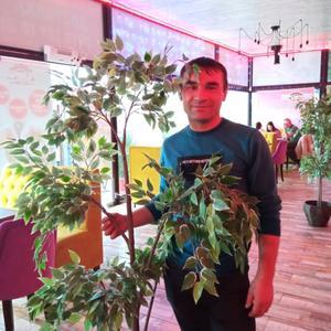 Анатолий, 43 года, Керчь