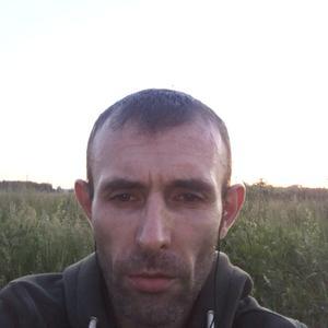 Василий, 40 лет, Зеленоград