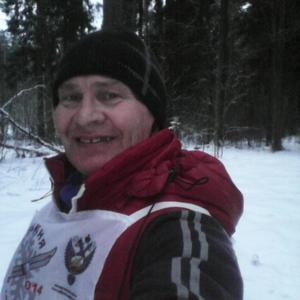 Виктор Жеребцов, 61 год, Кострома