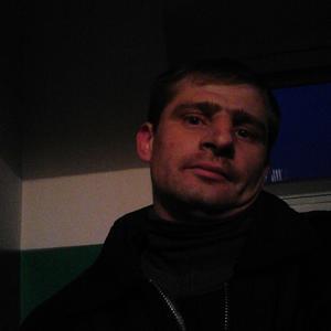 Александр, 42 года, Фрязино