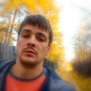 Mr Raccoon, 26 лет, Иркутск