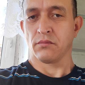 Рустам, 43 года, Лысьва