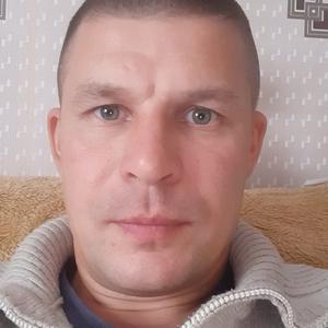 Владимир, 41 год, Гусев