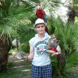 Никита, 27 лет, Котлас