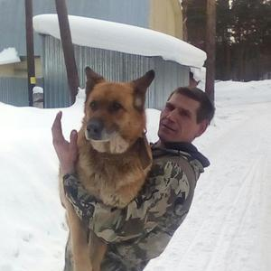 Павил, 38 лет, Томское