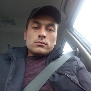 Бек, 29 лет, Жуковский