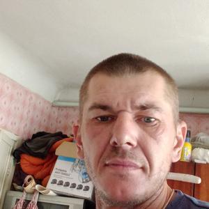 Виталий, 39 лет, Тула