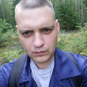 Александр, 33 года, Тихвин