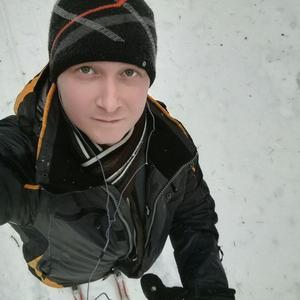 Дмитрий, 38 лет, Сокол