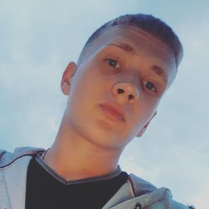 Кирилл, 23 года, Димитровград