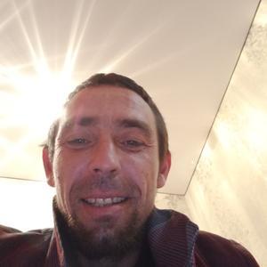 Антон, 37 лет, Пермь