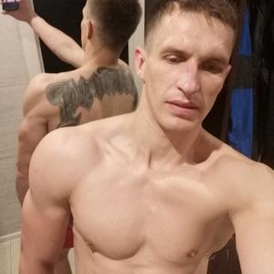 Дмитрий, 31 год, Можайск