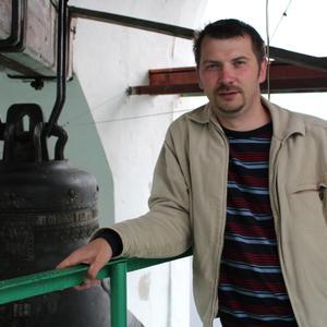 Юрий, 43 года, Лодейное Поле