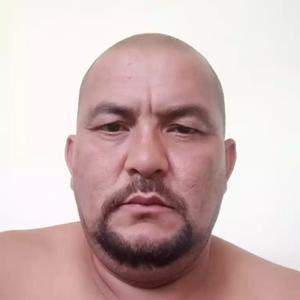 Odinokiy Volk, 43 года, Петрозаводск