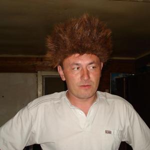 Александр, 42 года, Сокол