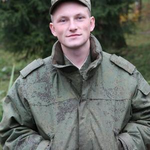 Николай Кульнев, 29 лет, Кашира
