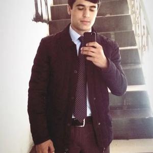 Али, 22 года, Череповец