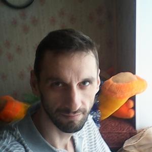 Сергей, 40 лет, Добрянка