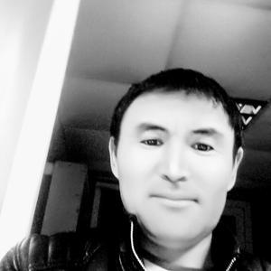 Эркин, 39 лет, Губкинский