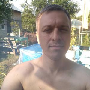 Дмитрий, 36 лет, Чехов