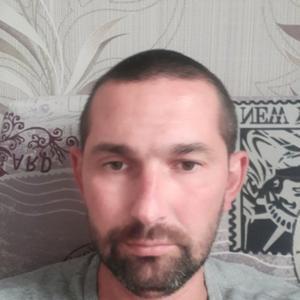 Андрей, 39 лет, Котлас