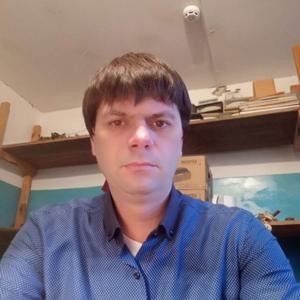Николай, 37 лет, Павловск