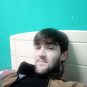 Влад, 27 лет, Лосино-Петровский