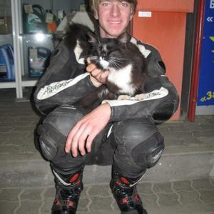 Алексей, 31 год, Раменское
