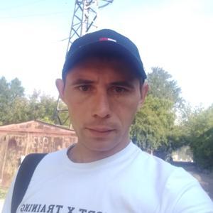 Виталии, 30 лет, Новосибирск