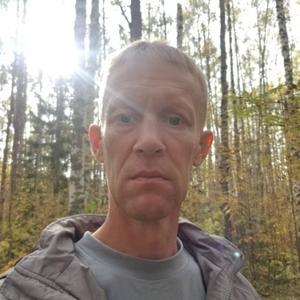 Алексей, 41 год, Йошкар-Ола