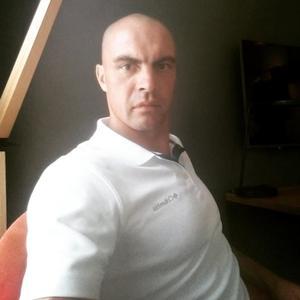 Николай, 38 лет, Устюжна