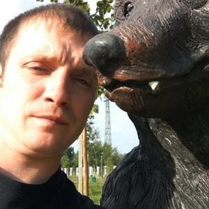 Александр, 37 лет, Новотроицк