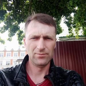 Андрей, 43 года, Брянск