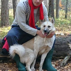 Ромка, 33 года, Омск