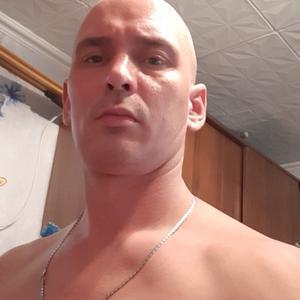 Андрей, 36 лет, Архангельск
