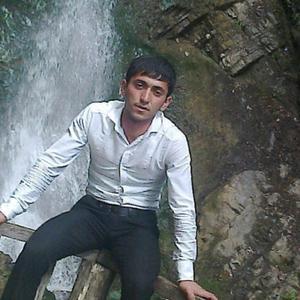 Рауф, 29 лет, Мытищи