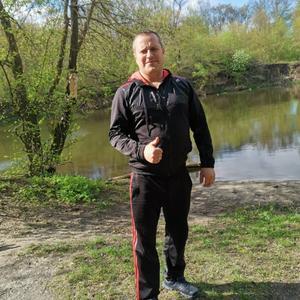 Алексей, 39 лет, Курск