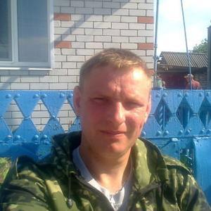 Владимир, 38 лет, Брянск
