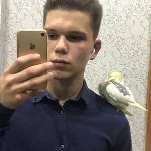 Никита Король, 22 года, Белово