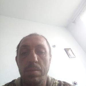 Миша, 41 год, Дальнегорск