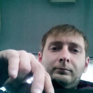 Макс, 35 лет, Каменногорск