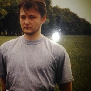 Александр, 42 года, Тосно