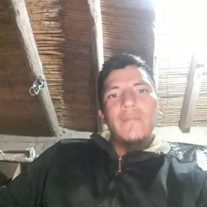 Jose Quispe, 34 года, Москва