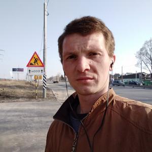 Динис Рорнилов, 30 лет, Владимир