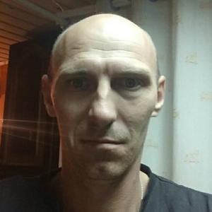 Николай, 37 лет, Троицк