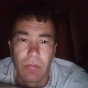 Батя, 36 лет, Воронеж
