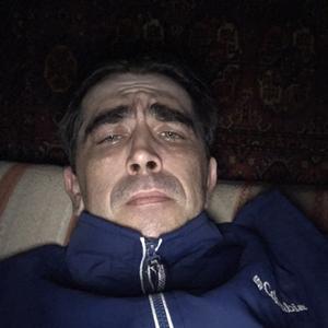 Николай, 37 лет, Ефремов