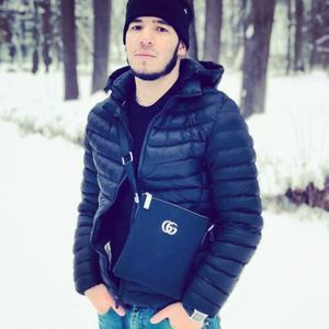 Арсен, 24 года, Дмитров