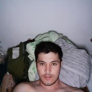 Ali, 33 года, Долгопрудный